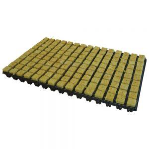 cultilene small propagator cubes in a tray 25mm