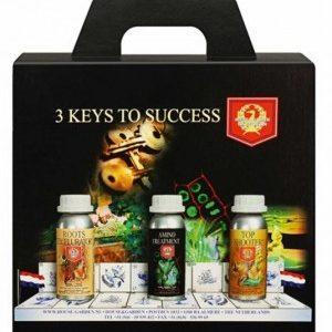 3 Keys To Success 3 x 250ml