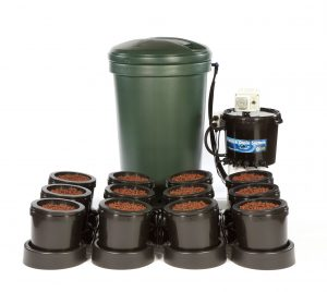 IWS 12 Pot System With Remote Brain